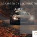 Naprawy blacharsko-lakiernicze Audi - lakiernik, blacharz do Audi w Sztuka Lakierowania, Warszawa, Białystok, Ełk